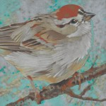 Little Red Cap (Chipping Sparrow)
