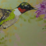 Ruby Throat (humming bird in flight)