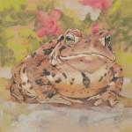Toad-ja (toad)